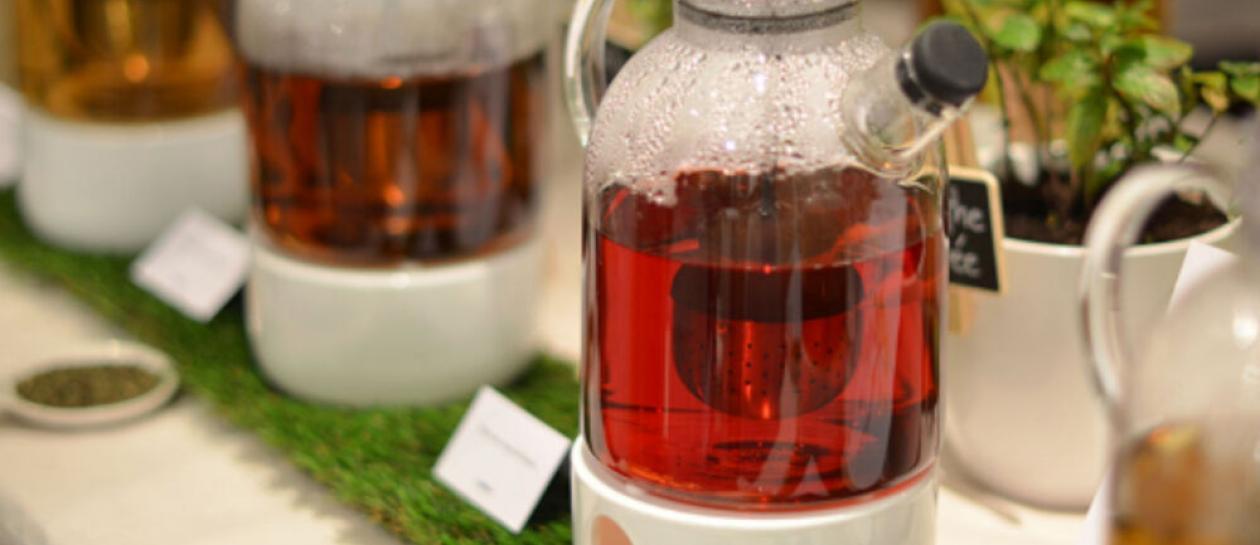 Découverte des plantes aromatiques et création d'infusions