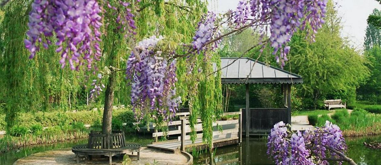 Park of the Impressionists : a tribute to Monet