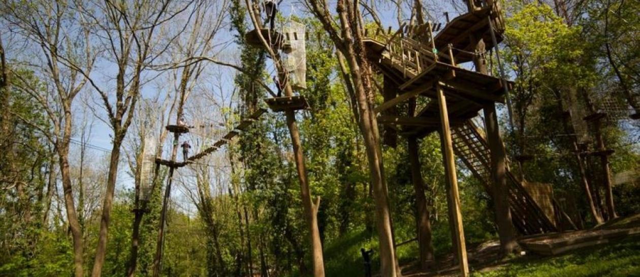 Treetop Adventure Park at Vert-Bois