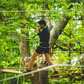 Treetop Adventure trails